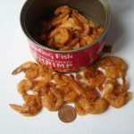 a can of shrimp